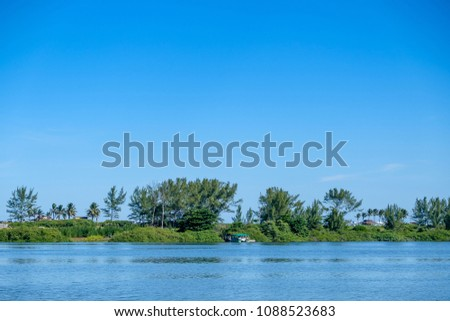 Mangrove trees and other vegetation growing on the edge of MarapMangrove trees and other vegetation growing on the edge of Marapendi Lagoon, in Barra da Tijuca, Rio de Janeiro. #1088523683