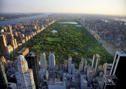 Manhattan Central park view from high position in the evening landscape