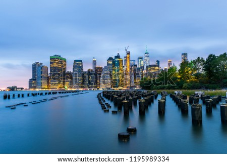 Manhattan panoramic skyline at night from Brooklyn Bridge Park. New York City, USA. Office buildings and skyscrapers at Lower Manhattan (Downtown Manhattan). #1195989334