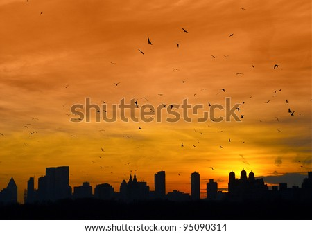 Manhattan with birds flying
