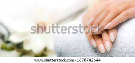 Manicure and Hands Spa. Beautiful Woman hands closeup. Manicured nails and Soft hands skin wide banner. Beauty treatment. Beautiful woman's nails with beautiful baby boomer manicure copy space text. Photo stock ©