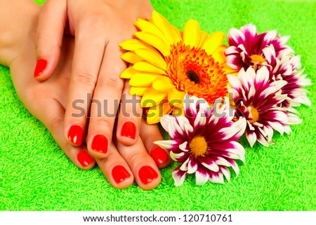 manicure on hands of a young woman and gerbera and green towel