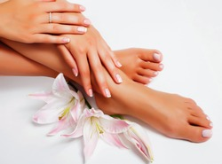 manicure pedicure with flower lily closeup isolated on white background perfect shape hands spa salon