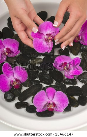 Manicured hands with therapeutic pebbles, herbal water and beautiful orchids
