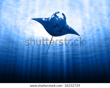 Manta ray with sun