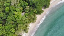 Manuel Antonio National Park, Biodiversity, animals, tropical plants and beautiful beaches.(Quepos, Costa Rica)