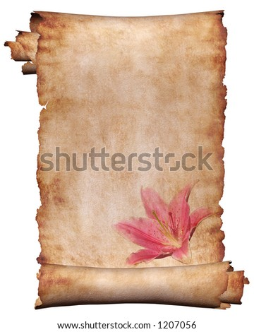 Manuscript, roll of parchment with flower background frame