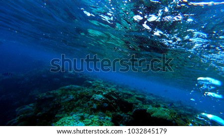 many air bubbles rise from the bottom of the sea #1032845179