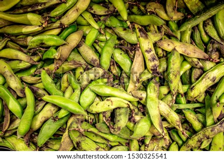 many bad looking shell beans piled up