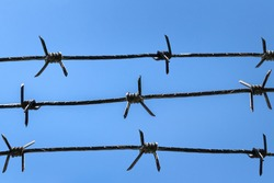many barbed wires against blue sky background. imprisonment and prison concept