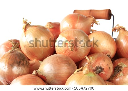 many big onions before a white background