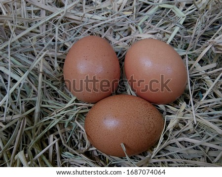 many brown eggs on rice straw.The benefits of egg are rich in vitamins and minerals of various types, such as B vitamins, vitamin C, vitamin D, vitamin E, vitamin K.