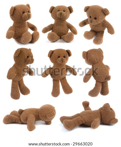 Many brown teddy bears isolated on white - all in hi-res