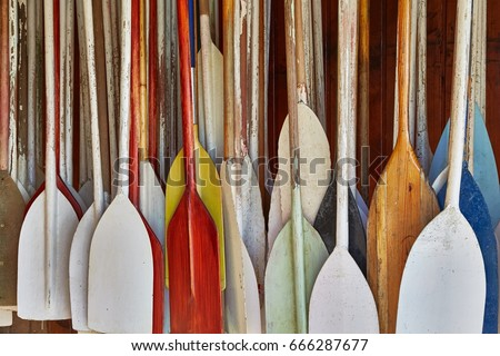 Many canoe paddles hanging in a shed