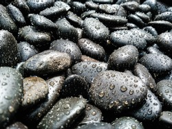 Many dark stones of various sizes covered with small drops of water, sprayed with water. Black, gray, dark brown pebbles. Flat black stones, round stones after rain.