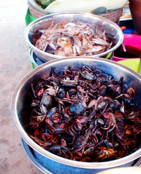 many deep brown red color pickled crabs on large container for sale on a street market in THAILAND ready for traditional kitchen and menus