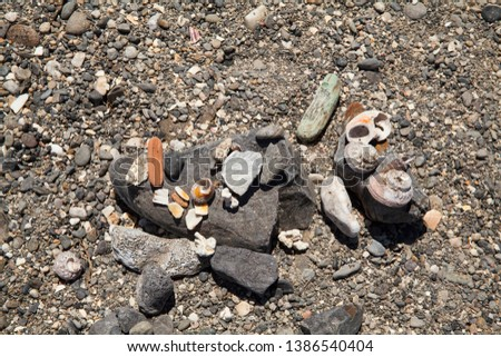 Many different stones and shells lying on the seashore on the rocks on the seashore #1386540404