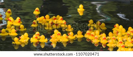 Many Ducky Toy Little Yellow Rubber Duck Bath Toy floating on the river