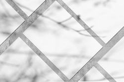 Many empty white vertical rectangle poster or card mockups lying diagonally with soft tree leaves and branches shadows on neutral light grey concrete wall background. Flat lay, top view