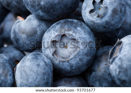 many fresh blueberries. food background. selective focus