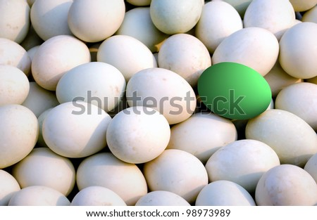 Many fresh duck eggs and green as background. - stock photo