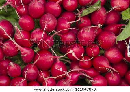 Many fresh radishes on weekly market