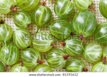 Many gooseberry fruits on gray linen table cloth