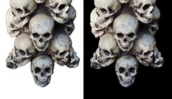 Many human skulls isolated on white and black background.