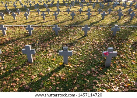 many identical gray crosses in polish military cemetery. autumn and sunset of life. struggle for congregation and independence of the motherland #1457114720