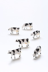 Many miniature cow figures on a white table