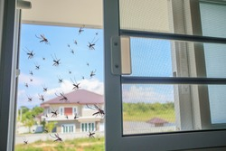 Many mosquitoes flying in to the house while insect net was opened