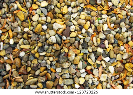 Many pebbles in different colors and sizes.