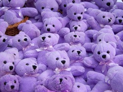Many plush teddy bears of violet or lavender color in Provence (France). These teddy bears are scented with lavender (Lavandula) which is symbol of region. Pretty toy romantic background for wallpaper