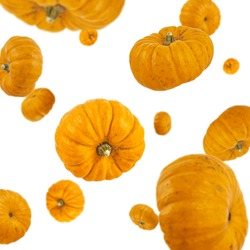 Many pumpkins freefalling on white background. Selective focus - shallow depth of field.