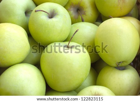 Many ripe green and yellow apples closeup