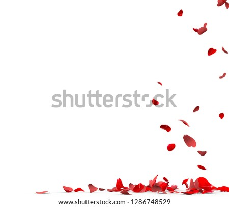 Many rose petals fall on the floor. Isolated on white background #1286748529