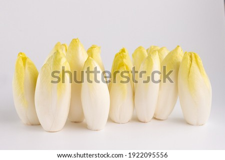 many row endives salad roots or chicory on white background, front view, healthy organic meal concept Foto stock ©
