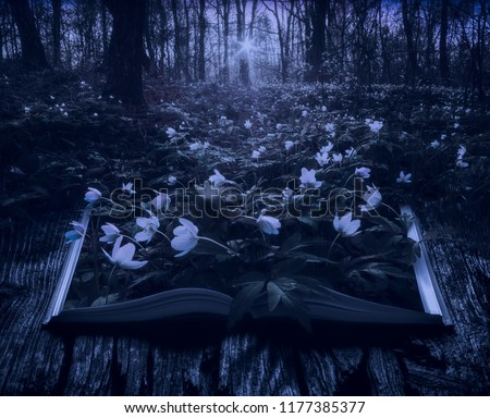 Magical world of reading,open magic book Images and Stock Photos