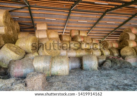 many straw bales and hay bales lie dry under one roof #1419914162