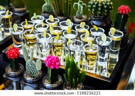 many tequila glasses with lemon and cactus #1188236221