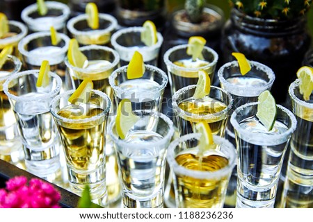 many tequila glasses with lemon and cactus #1188236236