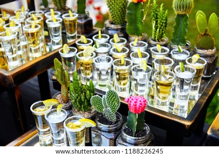 many tequila glasses with lemon and cactus #1188236245