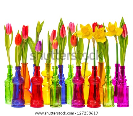 many tulip and narcissus flowers in colorful glass vases on white background
