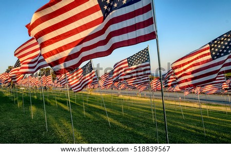 Many US American flags flying to the left on green field during daylight
