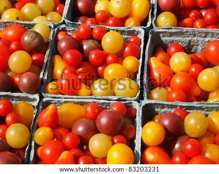 Many varieties of tiny, beautiful heirloom tomatoes in the sunlight at a farmer's market.