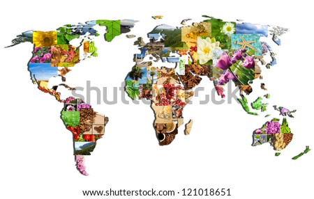map of the world of the many photographs on a white background