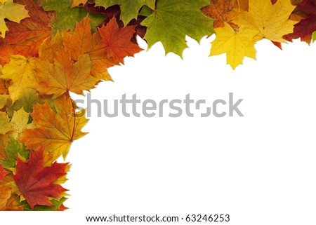 Maple leaf frame on white with clipping path.