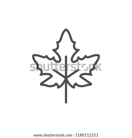 Maple leaf line icon isolated on white