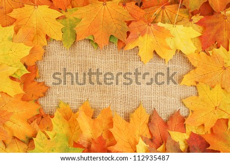Maple leaves on sack background