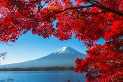 Maple Reefs and Mount Fuji from Kawaguchiko Lake in Autumn